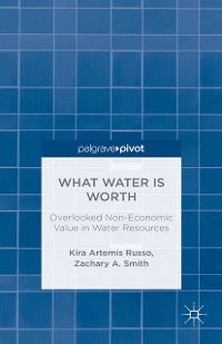 Cover What Water Is Worth: Overlooked Non-Economic Value in Water Resources