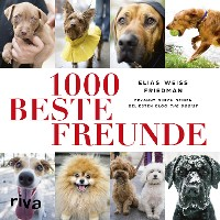 Cover 1000 beste Freunde