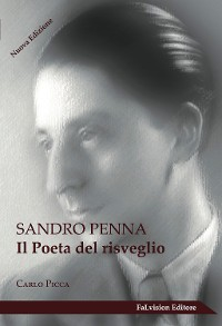 Cover Sandro Penna