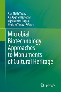 Cover Microbial Biotechnology Approaches to Monuments of Cultural Heritage