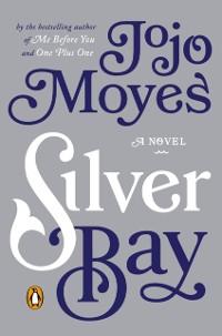 Cover Silver Bay
