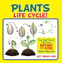 Cover Plant's Life Cycle! From Small Sprouts to Big Leaves - Botany for Kids - Children's Botany Books