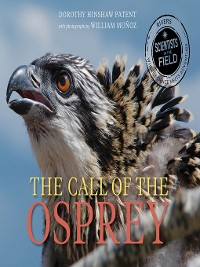 Cover The Call of the Osprey