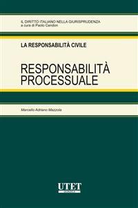 Cover Responsabilità processuale