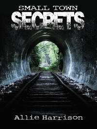 Cover Small Town Secrets