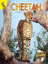Cover Cheetah
