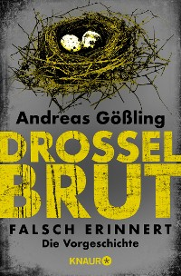 Cover Drosselbrut - Falsch erinnert