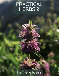 Cover Practical Herbs 2