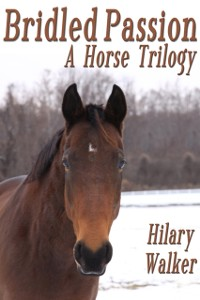 Cover Bridled Passion: A Horse Trilogy