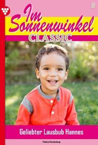 Cover Im Sonnenwinkel Classic 5 – Familienroman