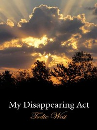 Cover My Disappearing Act