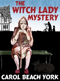 Cover The Witch Lady Mystery