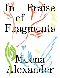 Cover In Praise of Fragments