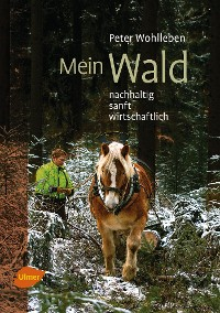 Cover Mein Wald