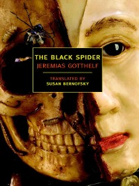 Cover The Black Spider