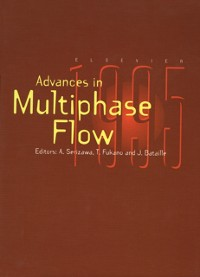 Cover Multiphase Flow 1995