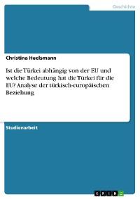 Cover Ist die Türkei abhängig von der EU und welche Bedeutung hat die Türkei für die EU? Analyse der türkisch-europäischen Beziehung