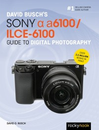 Cover David Busch's Sony Alpha a6100/ILCE-6100 Guide to Digital Photography