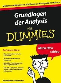 Cover Grundlagen der Analysis für Dummies