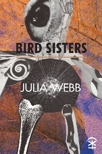 Cover Bird Sisters
