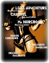 Cover Lgbt Adventure (Illustrated Edition) - Chattel (Illustrated Edition) - Ms Norcross (Illustrated Edition)