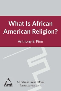 Cover What is African American Religion?