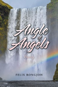 Cover Angle of Angels