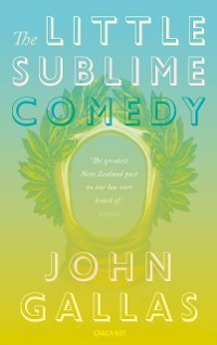 Cover The Little Sublime Comedy