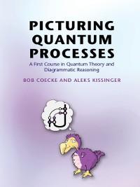 Cover Picturing Quantum Processes
