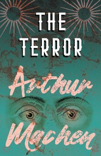Cover The Terror - A Mystery