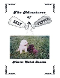 Cover The Adventures of Salt & Pepper