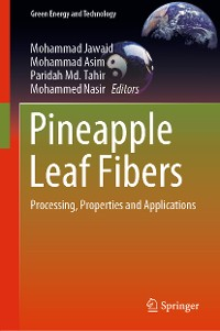 Cover Pineapple Leaf Fibers