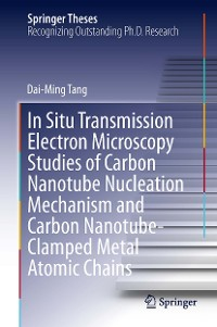 Cover In Situ Transmission Electron Microscopy Studies of Carbon Nanotube Nucleation Mechanism and Carbon Nanotube-Clamped Metal Atomic Chains