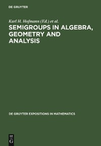 Cover Semigroups in Algebra, Geometry and Analysis