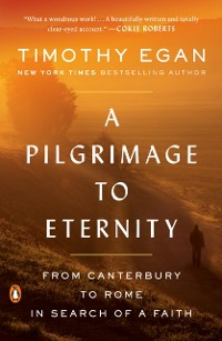 Cover Pilgrimage to Eternity