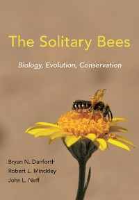 Cover The Solitary Bees