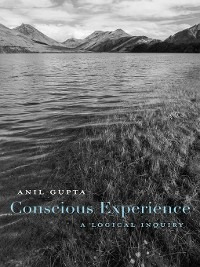 Cover Conscious Experience