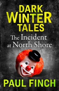Cover Incident at North Shore (Dark Winter Tales)