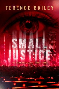 Cover Small Justice