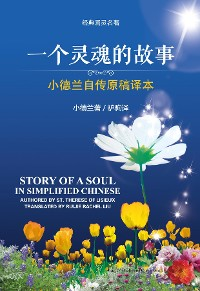 Cover Story of a Soul in Simplified Chinese