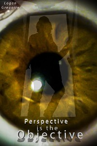 Cover Perspective is the Objective