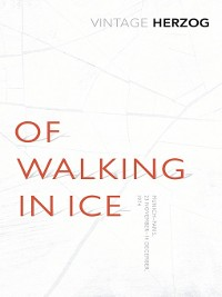 Cover Of Walking In Ice