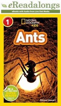Cover Ants