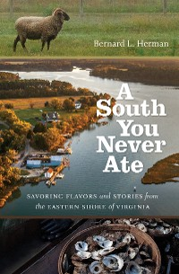 Cover A South You Never Ate