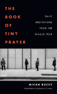 Cover The Book of Tiny Prayer