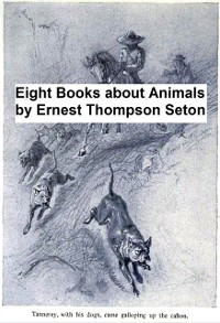 Cover Eight Books About Animals