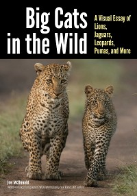 Cover Big Cats in The Wild
