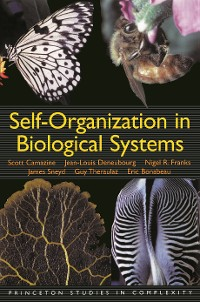 Cover Self-Organization in Biological Systems