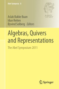 Cover Algebras, Quivers and Representations