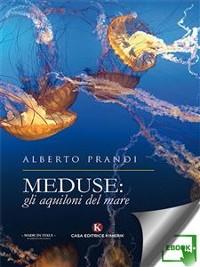 Cover Meduse: gli aquiloni del mare